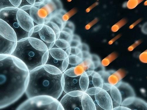 Отрицательное воздействие радикалов на клетки