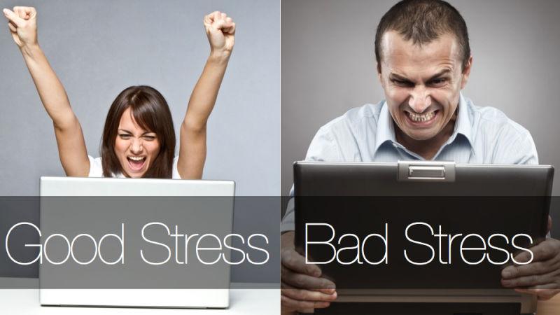 Фазы стресса по Селье
