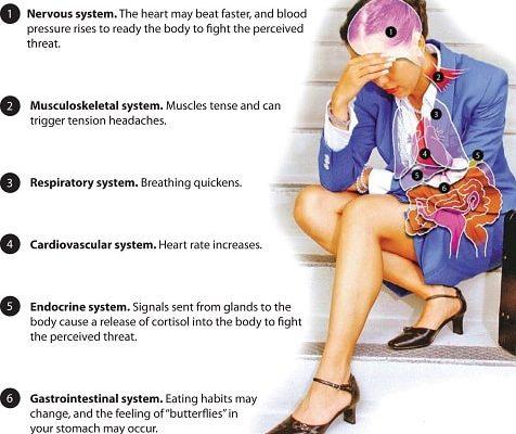 Стресс и его влияние на человека