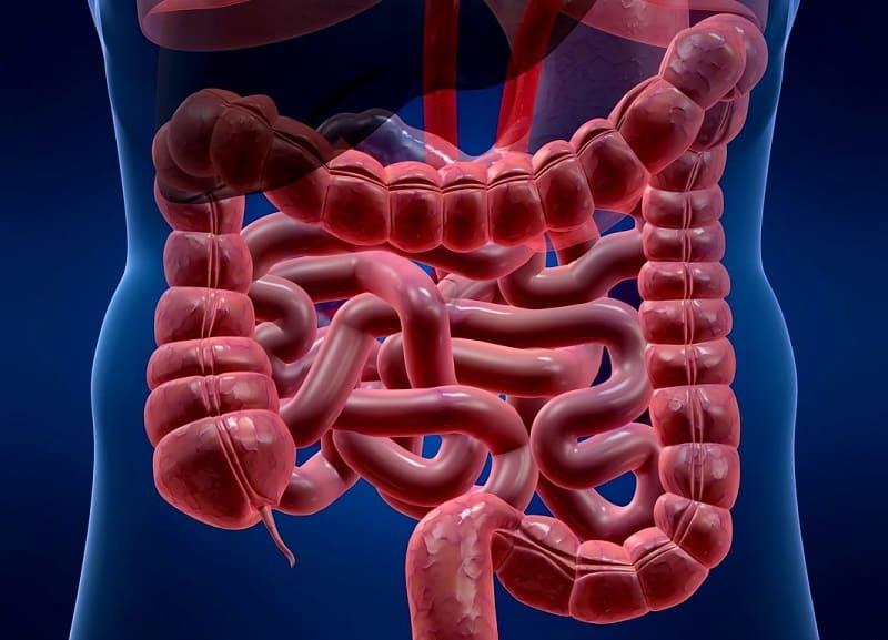 Невроз кишечника
